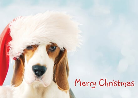 Christmas Beagle calendar promotional products